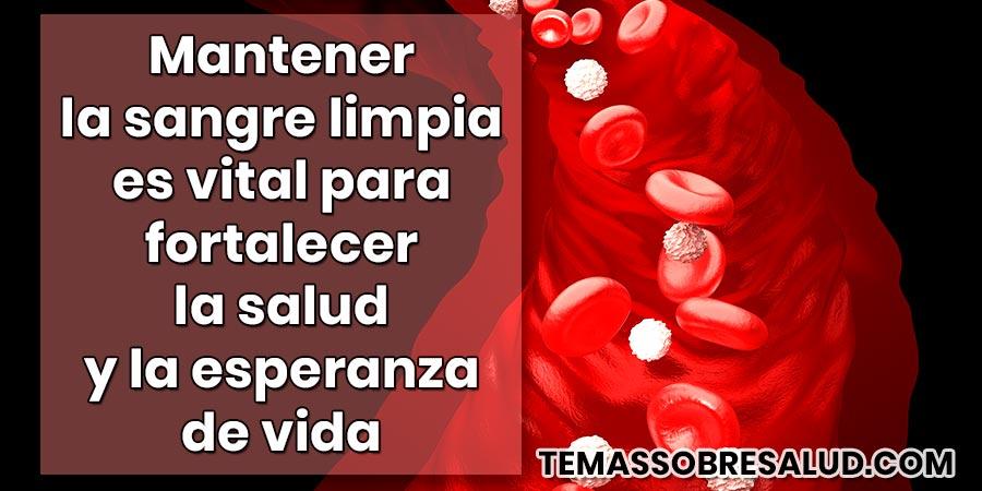 Limpiar la sangre