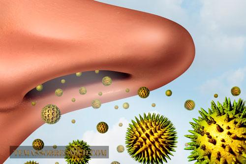 Alérgenos asma bronquial